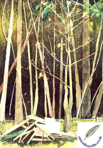 image of landscape 5
